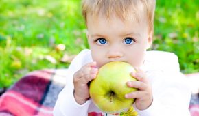 Миниатюра к статье Детская стоматология: все о первых зубах